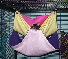 Updated Oct 27 - Hammock Tutorials - Bunk Bed and Tunnel - The Rat Shack