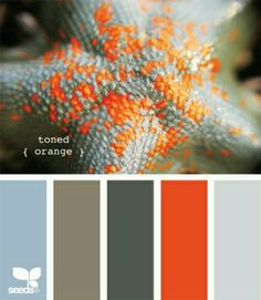 Colour scheme using a pop of orange with relaxing neutrals and blue - For the bedroom?