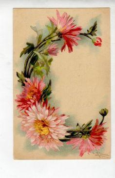 Postcard Artist Signed Catherine Klein Alphabet Letter C