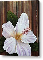 White Hibiscus Painting by Gayle Utter - White Hibiscus Fine Art Prints and Posters for Sale