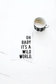 Wild World.