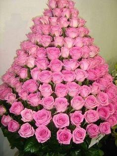 Mis Flores....Rosas