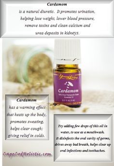 I need this for kidney benefits!  Young Living cardamom www.theoildropper.com