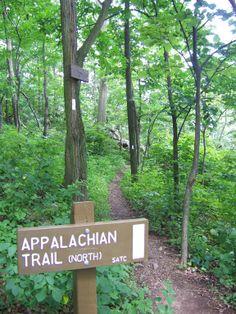 In Pennsylvania hiking on the Appalachian Trail, July 2009