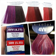 Iso just release a new series of reds And super violets. I am going crazy and want to use these shades on my clients. #guy_tang #guytangfavorites