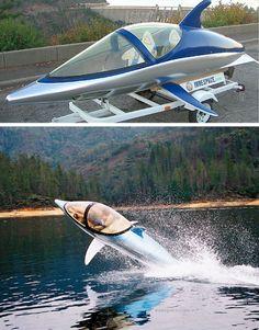 Dolphin shaped power boat!