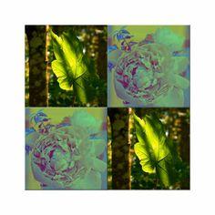 """'Viererbild """"Blatt und Blüte"""" pp' von lisa-glueck bei artflakes.com als Poster oder Kunstdruck $20.09"""