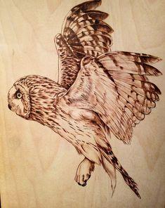Owl in flight by AdinBeg on DeviantArt
