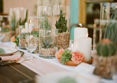Succulent table decorations.