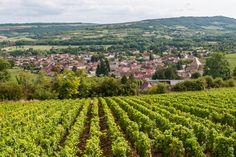 Route gourmande des vignobles de Bourgogne et du Beaujolais