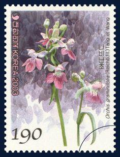 Korean Orchid Series (3rd), Orchis graminifolia (Reichb. fil.) Tang et Wang, Plants, Purple, Pink, Green, 2003 11 12, 한국의 난초 시리즈(세번째묶음), 2003년 11월 12일, 2350, 나비난초, postage 우표
