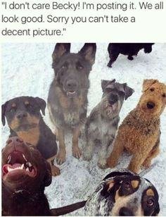 Always one in the group