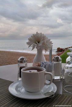 An All Inclusive Gourmet Experience at Villa Premier Boutique Hotel - La Ceiba Restaurant by the Beach.