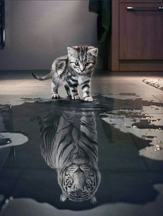 What really matter is.....  How you see yourself...