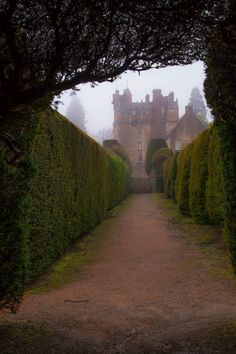 ghostlywatcher:  Crathes Castle. This 16th century castle is nestled among the most delightful woodlands, near Aberdeen, Scotland.