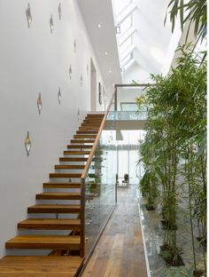 The house is punctured by an atrium that runs the full-length of the house, topped with an equally long skylight. The focus of the atrium is a suspended, sculptural stair that runs parallel to an interior bamboo garden. The risers are solid walnut wood, and protrude seamlessly from a patterned wall punctured with sculptural, cast-aluminum recesses. These rain-drop like pieces are illuminated from within and are designed to feature a collection of small objects. Design by Prototype Design…