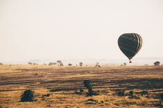 Are you planning a safari? Here are 5 safari experiences to add to your itinerary or to your travel bucket list! Adventure Travel Companies, Travel Tours, Las Vegas, Travel Europe Cheap, Tanzania Safari, Bucket List Destinations, Destination Voyage, Solo Travel, Travel Inspiration
