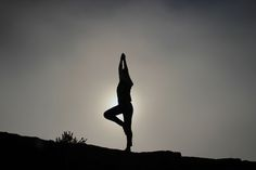 """""""Yoga is not about touching your toes. It is what you learn on the way down."""" – Jigar Gor  I want to talk about yoga. Actually, I don't really have much to say about y…"""