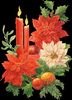 Image result for changing christmas flowers gif