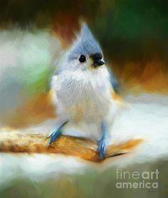Purity by Tina LeCour http://tina-lecour.artistwebsites.com/featured/purity-tina-lecour.html