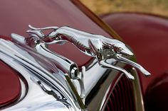 We're lucky enough to own an original one of these hood ornaments! ***Research for possible future project. Car Badges, Car Logos, Retro Cars, Vintage Cars, Skinny Dog, Car Hood Ornaments, Radiator Cap, Red Dog, Nose Art