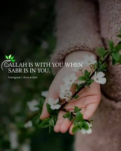Allah Quotes, Muslim Quotes, Quran Quotes, Hindi Quotes, Quotes Quotes, Qoutes, Life Quotes, Truth Quotes, Famous Quotes