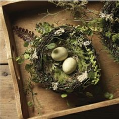 Earth Witch:  #Earth #Witch ~ Natural bird's nest with little eggs.
