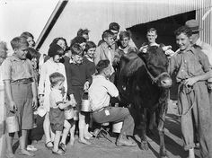 https://flic.kr/p/6dtWJs | Children's Day, free milk straight from the cow! Royal Easter Show, Sydney, c.1930s / Sam Hood | Format: Glass photonegative   Notes: Find more detailed information about this photograph: acms.sl.nsw.gov.au/item/itemDetailPaged.aspx?itemID=51538  Search for more great images in the State Library's collections: acms.sl.nsw.gov.au/search/SimpleSearch.aspx  From the collection of the State Library of New South Wales: www.sl.nsw.gov.au