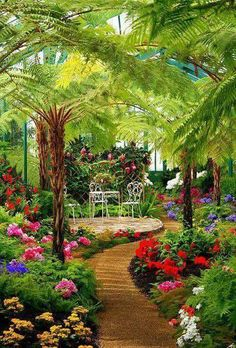 Landscape Ideas For Backyard Tropical Garden Paths Ideas Beautiful Nature Pictures, Beautiful Nature Wallpaper, Beautiful Landscapes, Most Beautiful Gardens, Beautiful Flowers Garden, Beautiful Beautiful, Landscape Design Program, Beautiful Places To Travel, Tropical Garden