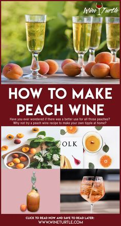 How to Make Peach Wine - Wine Turtle - Food: Veggie tables Homemade Peach Wine Recipe, Homemade Alcohol, Homemade Liquor, Wine And Liquor, Wine And Beer, Wine Drinks, Beverages, Bourbon Drinks, Amigurumi