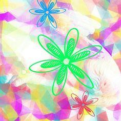 Funkadelic Flower  Find on my #zazzle store, Purelifephotos