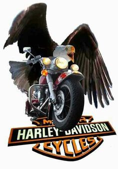 Harley Davidson Events Is for All Harley Davidson Events Happening All Over The world Harley Davidson Decals, Harley Davidson Posters, Harley Davidson Images, Harley Davidson Parts, Harley Davidson Chopper, Harley Davidson Motorcycles, Motorcycle Logo, Motorcycle Posters, Harley Davison