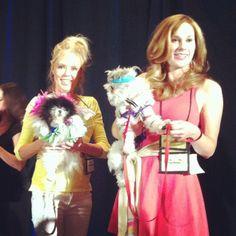 @jackpomeranian mom Shannon Olsen w/ her #pawjectrunway design at #blogpaws