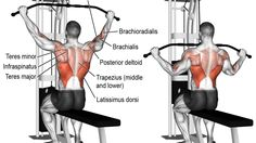 Wide-grip lat pull-down illustration