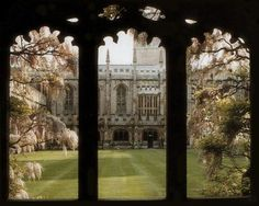 Oxford University - Magdalen College cloisters