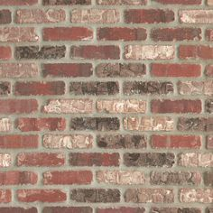 Castle Gate Thin Brick Panel - 10 x 28 - 100105675 Faux Brick Walls, Brick Paneling, Brick Flooring, Faux Brick Wall Panels, Brick Veneer Panels, Floors, Future House, Castle Gate, Stone Look Tile