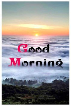 Looking for for images for good morning quotes?Browse around this site for unique good morning quotes ideas. These funny images will make you happy. Good Morning Nature, Good Morning Beautiful Quotes, Good Morning Images Hd, Good Morning Funny, Good Morning Sunshine, Good Morning Messages, Good Morning Greetings, Morning Pictures, Good Morning Wishes