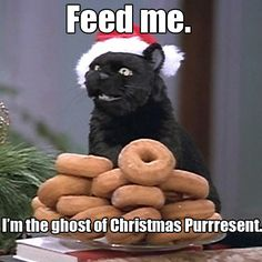 Salem Saberhagen from 'Sabrina the Teenage Witch.'