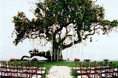 Love the use of the tree as the focal point