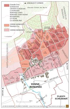 "Vosne-Romanée ""The Pearl of the Côte"""