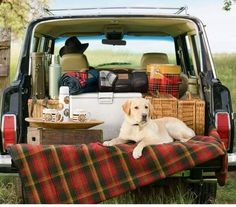 Wagging in a #Wagoneer - picnic perfect.