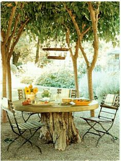 Repurposed tree stump