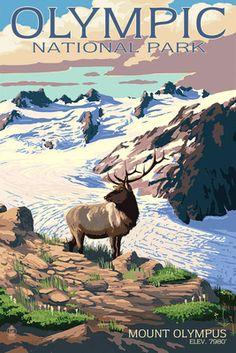 Olympic National Park, Washington - Mt. Olympus & Elk - Lantern Press…