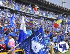 En fotos, la celebración del cumpleaños de Millonarios Goku, White People, Blue, Famous Artists, Football Team, Stars, Singers