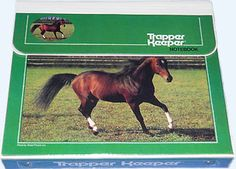 horse trapper keeper. I had this exact one as a kid!