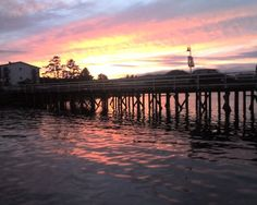 See 1 photo from 9 visitors to Port Hardy Government Dock. Best Places To Travel, Places To Go, British Columbia, Perfect Place, Growing Up, Beautiful Places, Canada, Sunset, Landscape