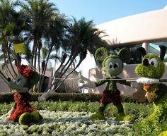 Disneyland at Home Garden