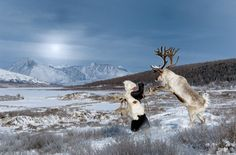 photographer Hamid Sardar-Afkhami in Mongolia: Dukha are an ancient group of people of Turk descent who are dependent on reindeer for their way of life. In addition to milk and cheese, the reindeer provide transportation for hunting. They're ridden to hunt wild elk and boar.