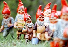Oh, GOD YES!  Gnome parade at my house!