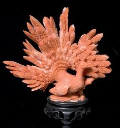 Chinese Coral PeacockÂ